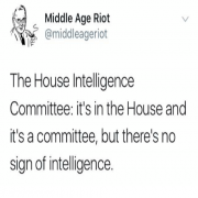 The House Intelligence Committee in a Nutshell...